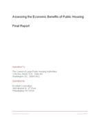 EconsultFinalReport2007
